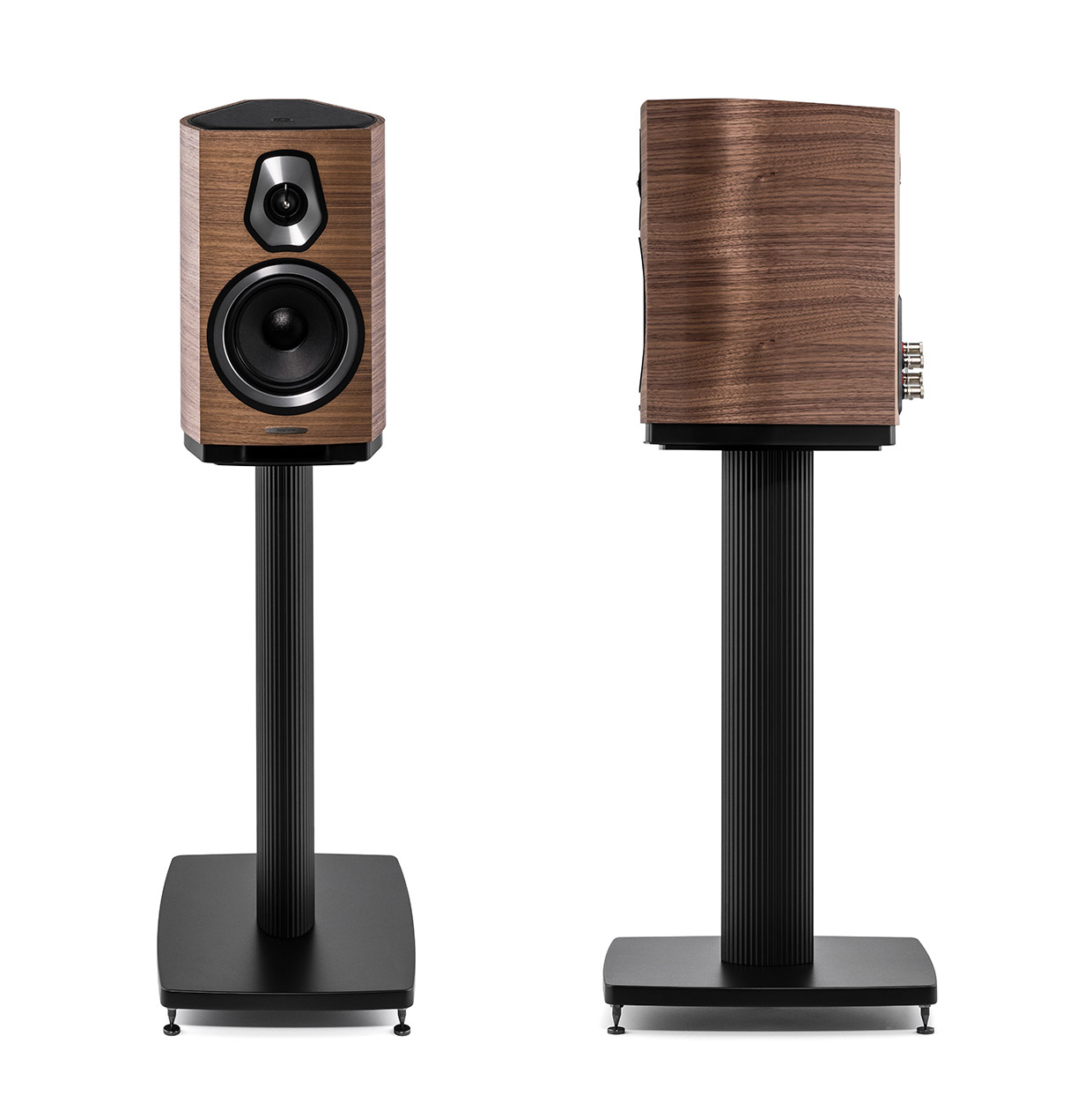Image result for sonus faber sonetto stand